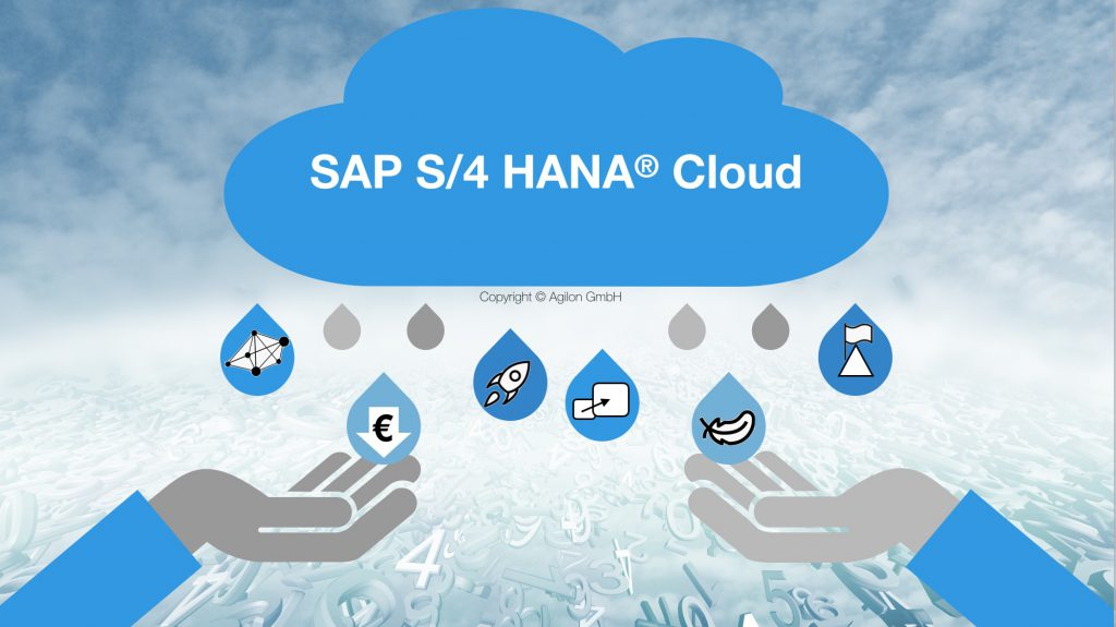 SAP S/4 HANA Cloud