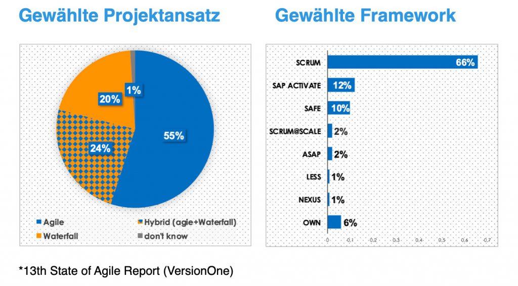 Agile SAP_Ansätze