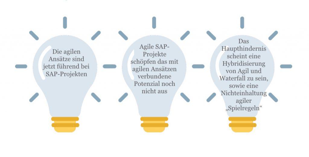 Agile SAP_Erkenntnisse
