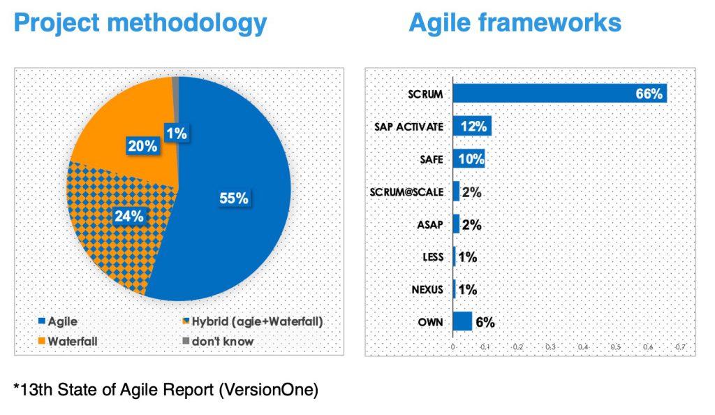 Agile SAP_Frameworks