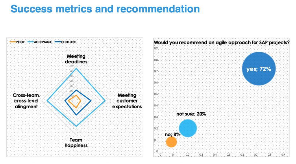 Agile SAP_Metrics