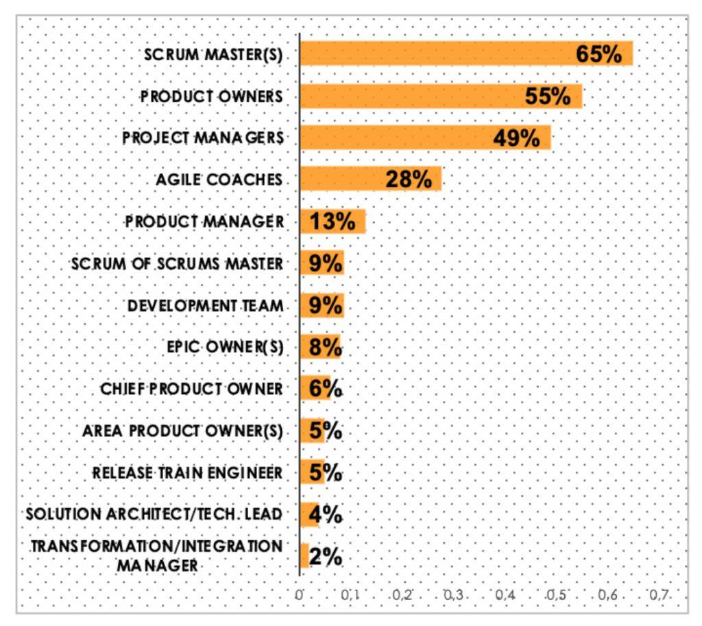 Agile SAP_Roles